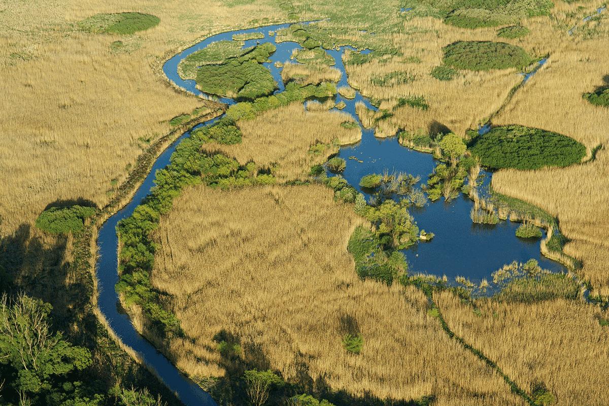 Naturpark Neusiedlersee