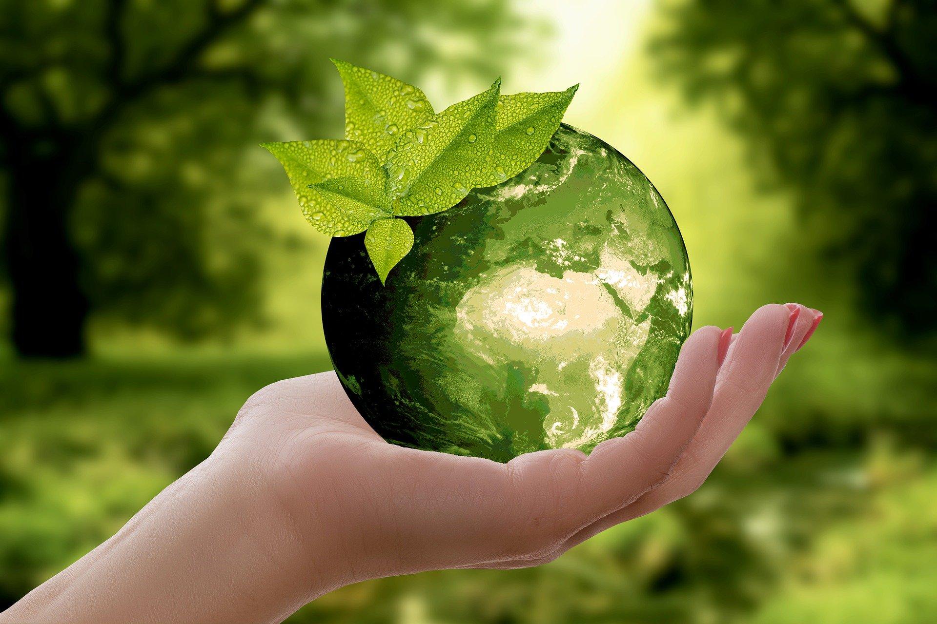 Grüne Erde in Hand